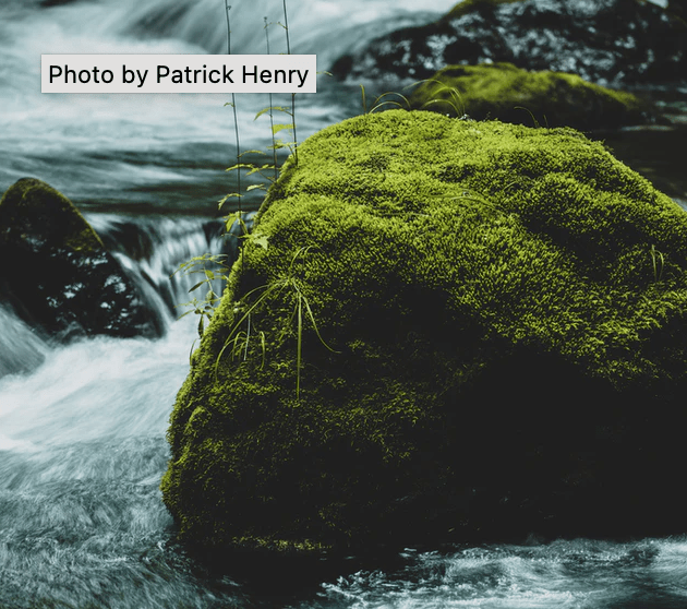 Native tooltip example showing it displayed on a picture of mossy rocks in a stream