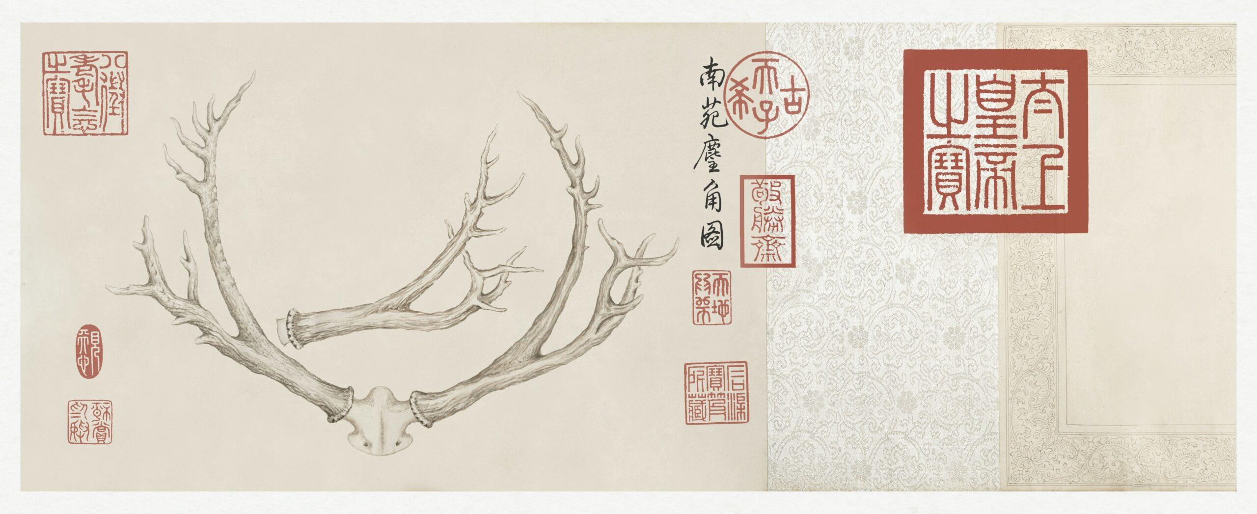 Two Paintings of Deer Antlers (ca. 1762–1767) by The Qianlong Emperor. Original from The MET Museum. Digitally enhanced by rawpixel.
