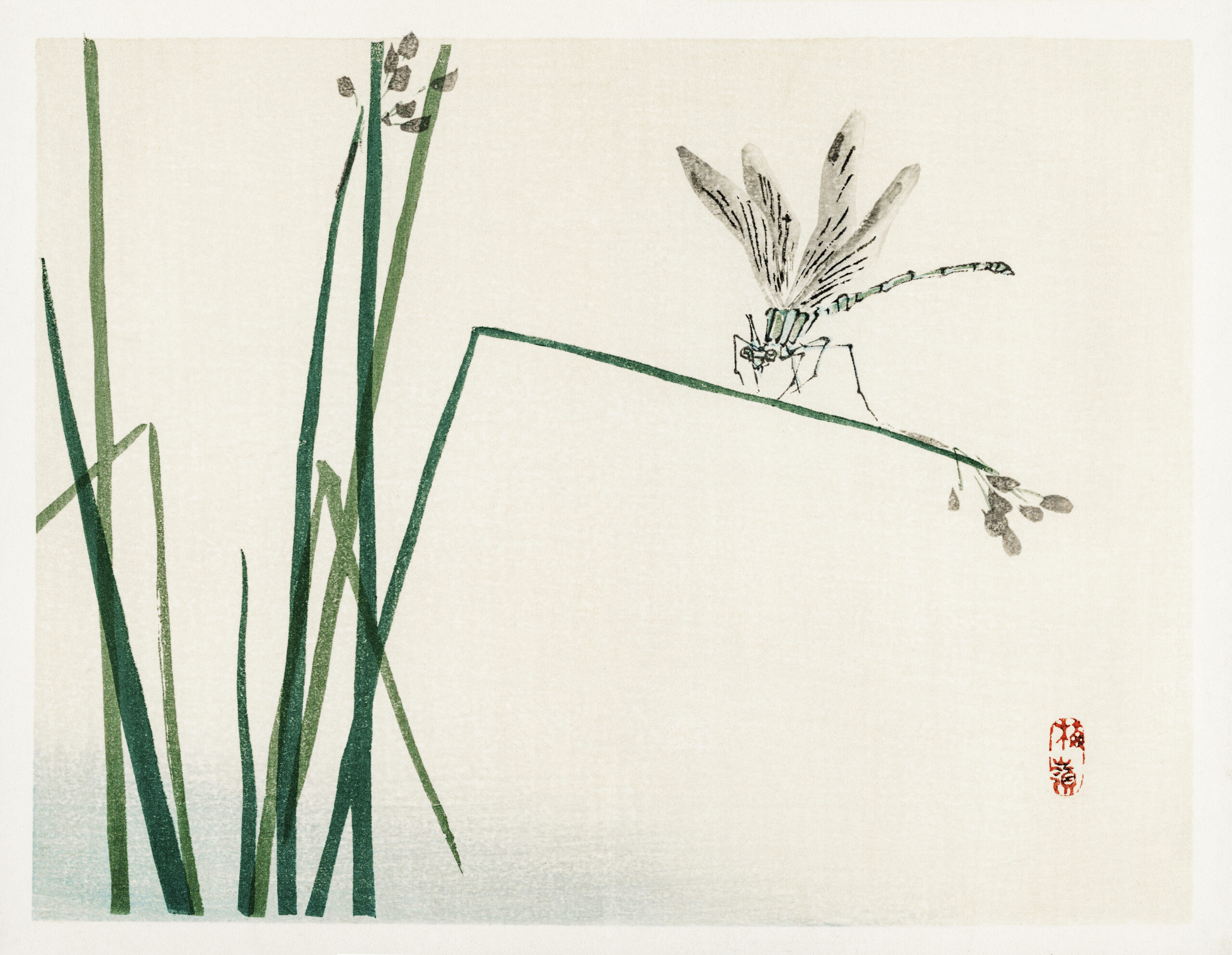 Dragonfly on Bulrush leaf by Kōno Bairei (1844-1895). Digitally enhanced from our own original 1913 edition of Bairei Gakan.