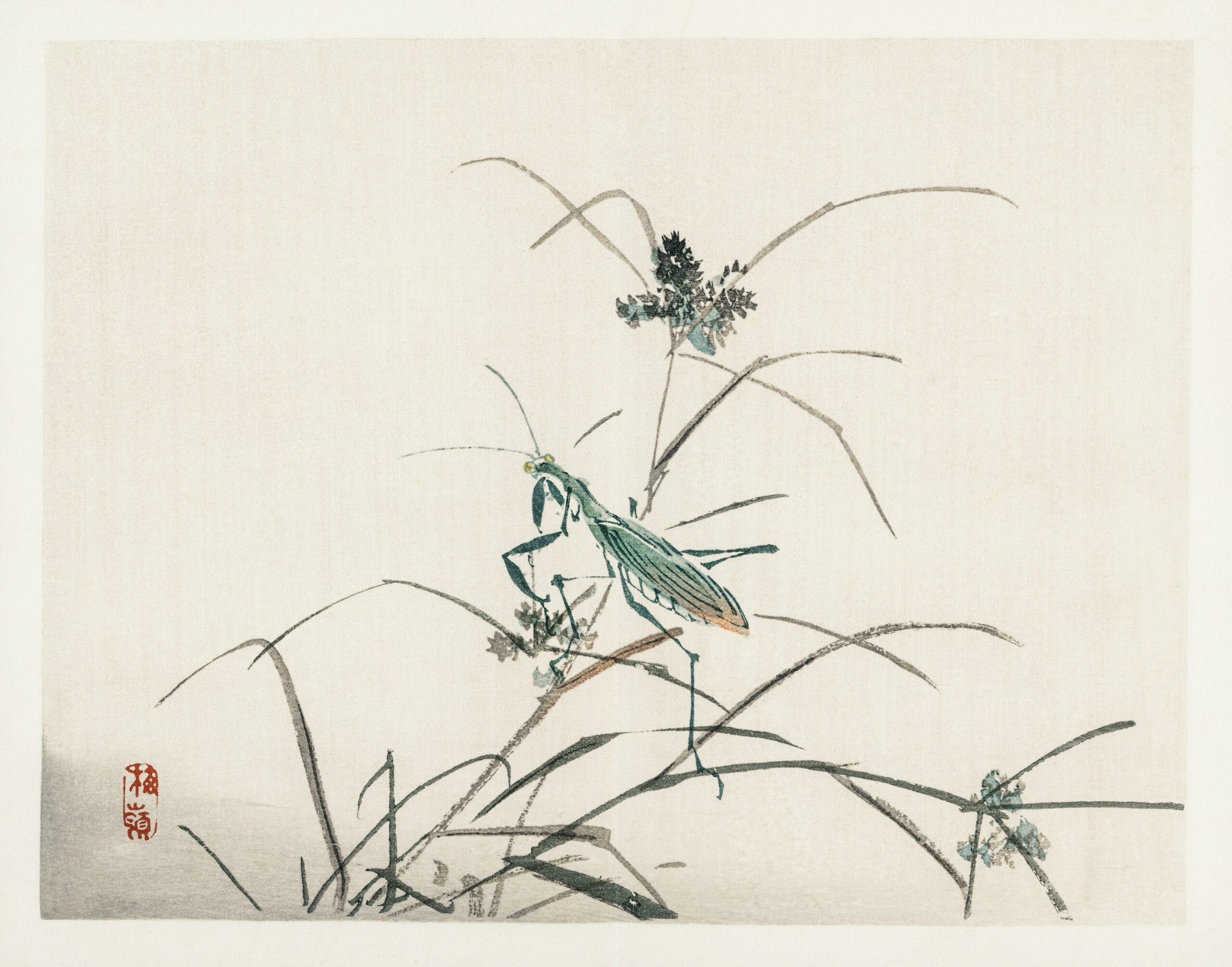 Grasshopper by Kōno Bairei (1844-1895). Digitally enhanced from our own original 1913 edition of Barei Gakan.